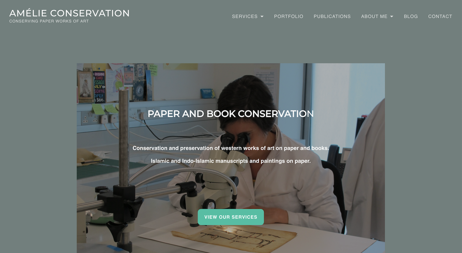 Frontpage of AmelieConservation.com